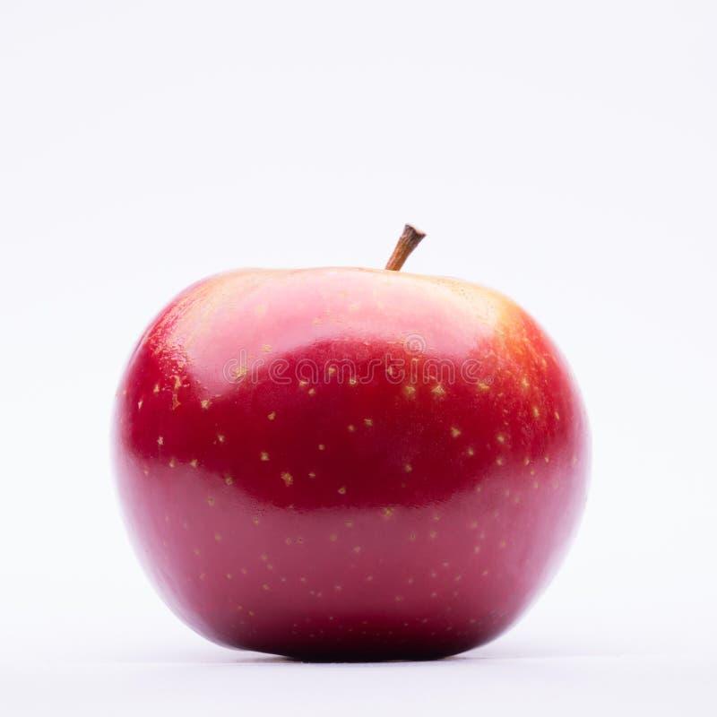 зрелое яблока красное стоковое изображение rf