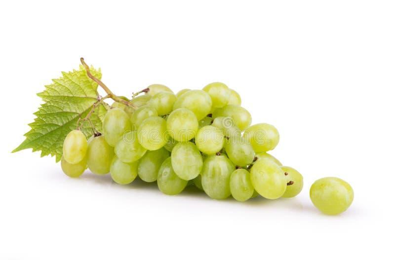Зрелые белые виноградины с листьями стоковая фотография