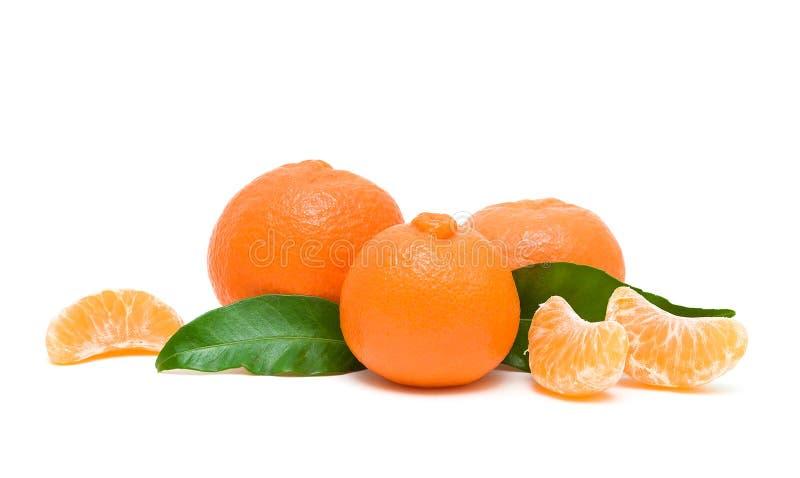Зрелые tangerines изолированные на белой предпосылке стоковое изображение