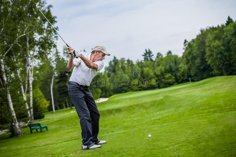 Зрелый игрок в гольф на поле для гольфа стоковое изображение