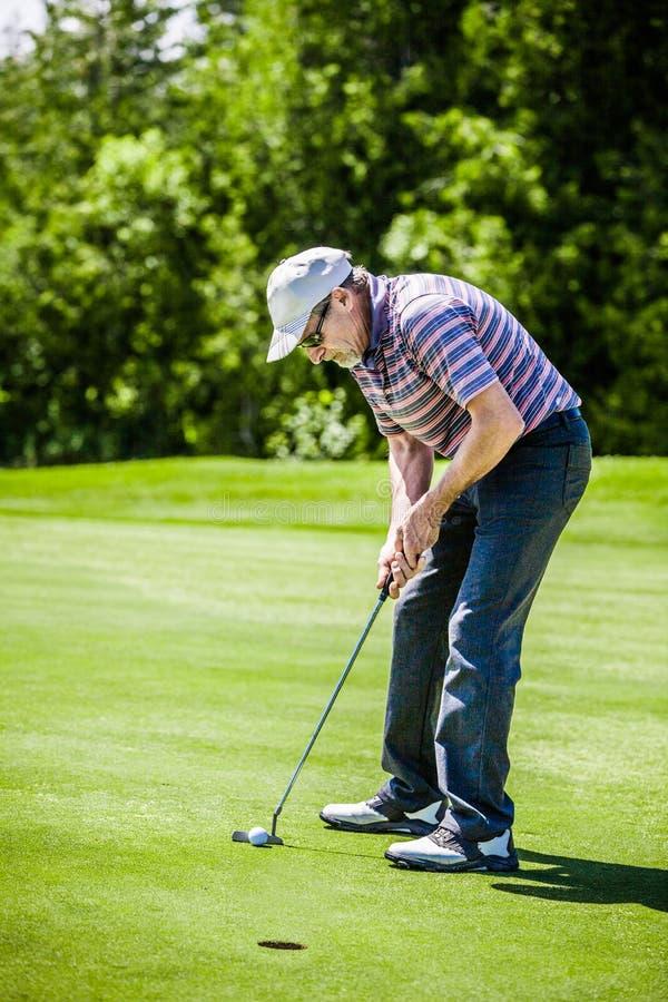 Зрелый игрок в гольф на поле для гольфа стоковое изображение rf