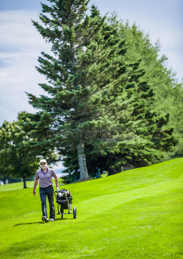 Зрелый игрок в гольф на поле для гольфа стоковые изображения