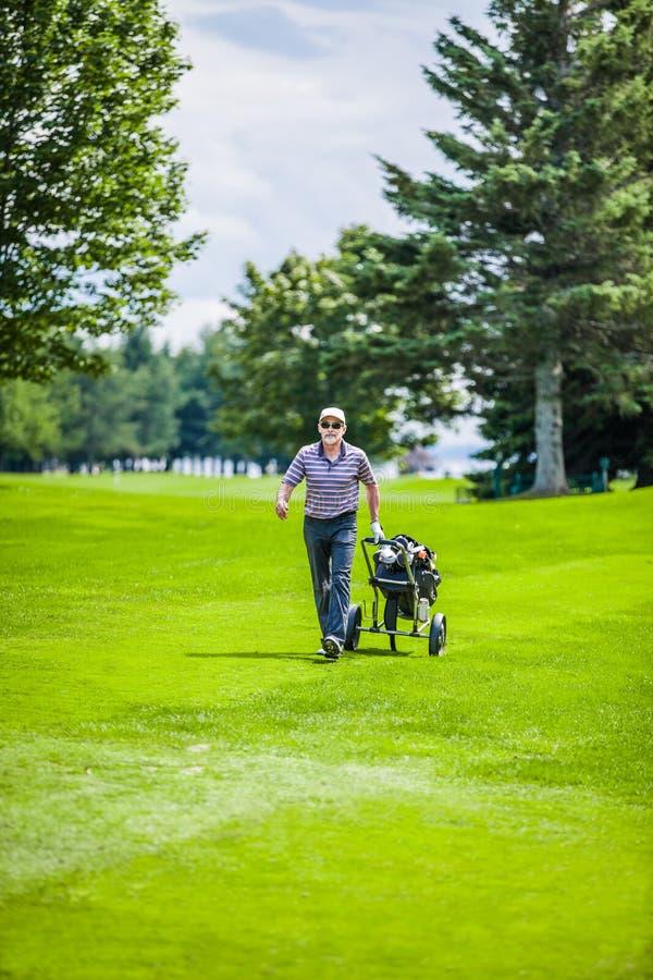 Зрелый игрок в гольф на поле для гольфа стоковые фото