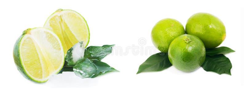 Зрелый плодоовощ при листья и лед известки изолированные на белой предпосылке стоковые фото