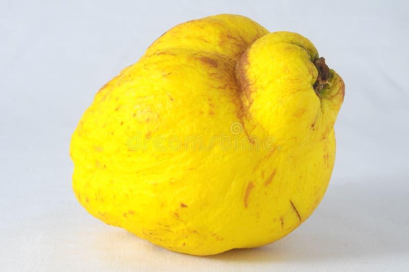 Download Зрелый плодоовощ стоковое изображение. изображение насчитывающей плодоовощ - 37925199