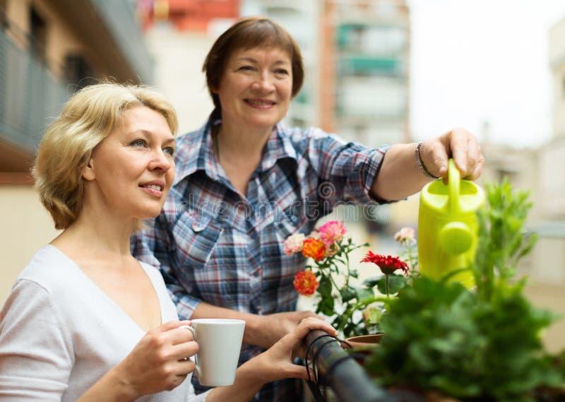 2 зрелых женщины выпивая чай на террасе стоковые изображения