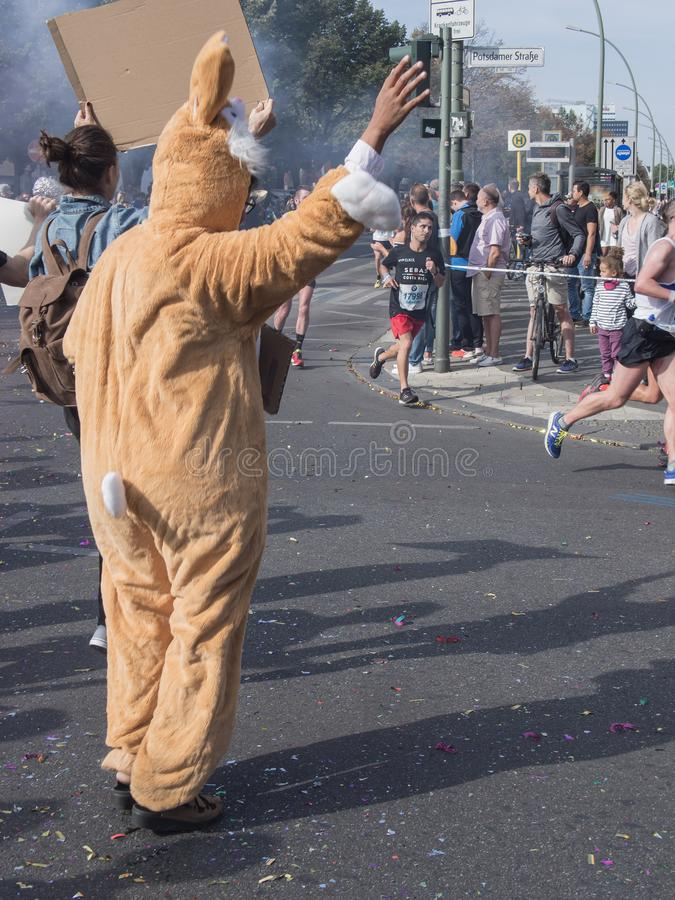 Зритель с костюмом и бегунами кролика на марафоне 2016 Берлина стоковая фотография rf