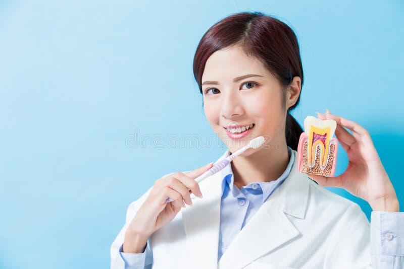 Зубная щетка взятия дантиста стоковое изображение