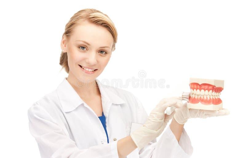 зубная щетка челюстей доктора стоковые изображения