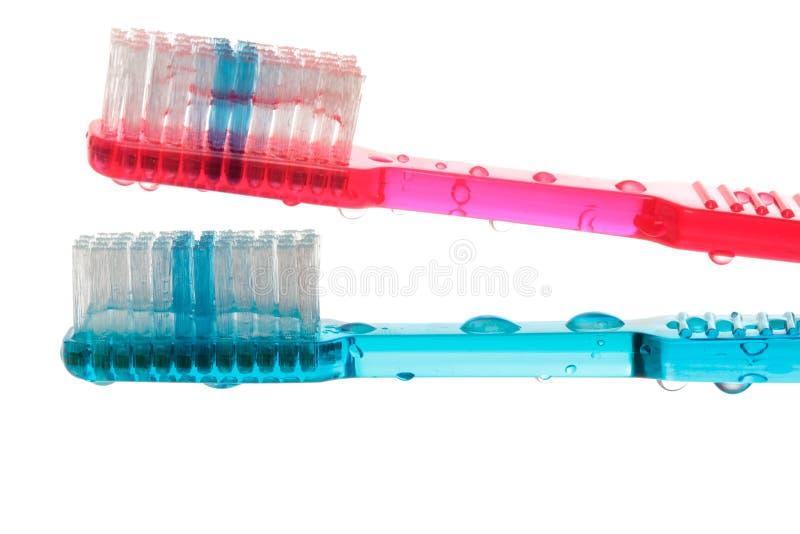 зубные щетки влажные стоковая фотография rf