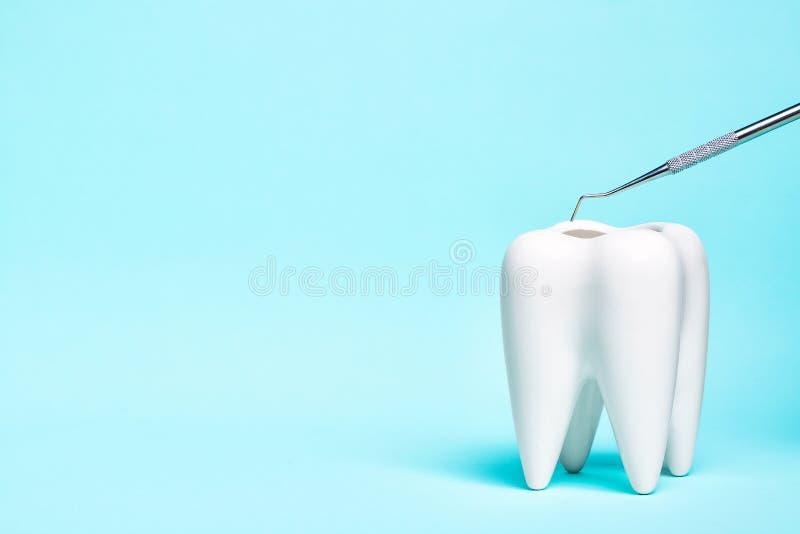 Зубоврачебная аппаратура зонда исследователя с белой моделью зуба на светлом - голубая предпосылка Зубоврачебная концепция здоров стоковые изображения