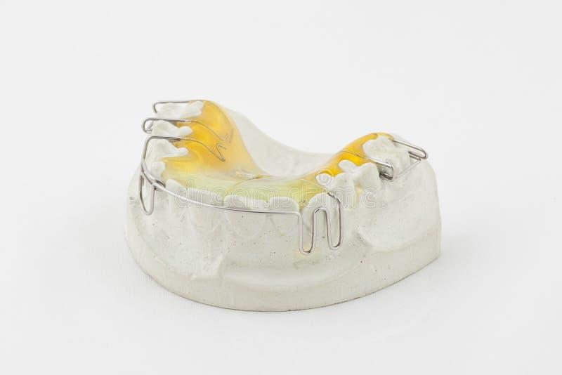 Зубоврачебная плита стоковое изображение