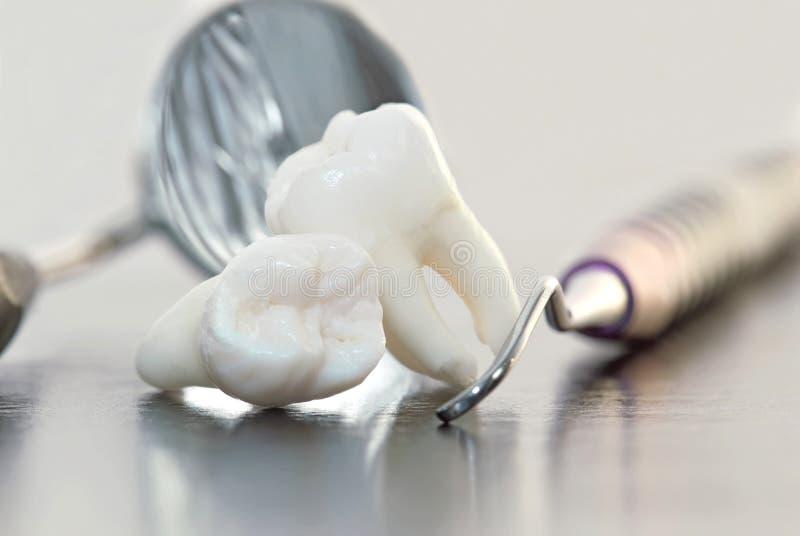 зубоврачебные зубы аппаратур стоковые изображения