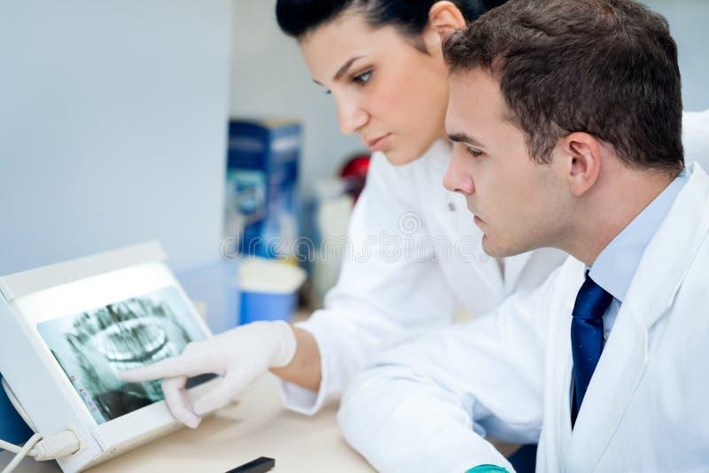 Зубоврачебный рентгеновский снимок стоковые фото