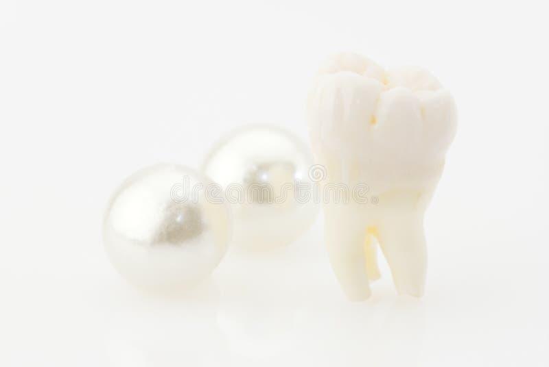 зубы принципиальной схемы здоровые стоковое фото rf