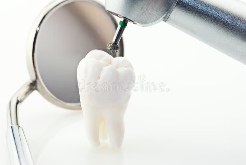 зубы принципиальной схемы здоровые стоковое изображение rf