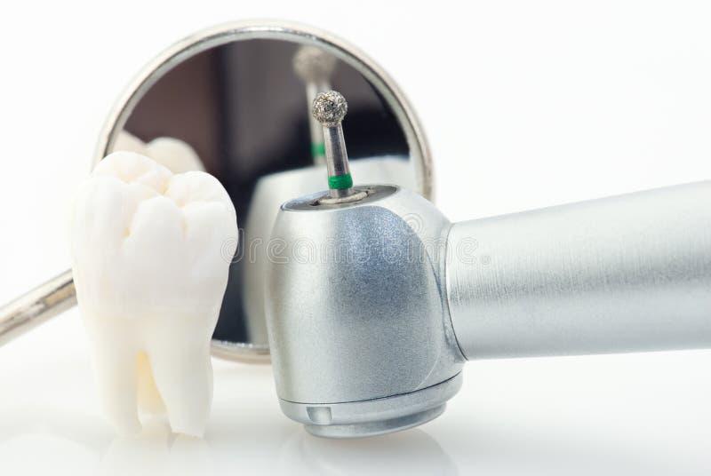 зубы принципиальной схемы здоровые стоковые изображения