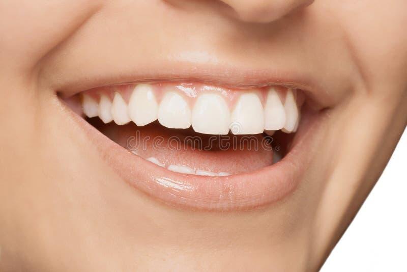 Зубы усмешки стоковые изображения rf