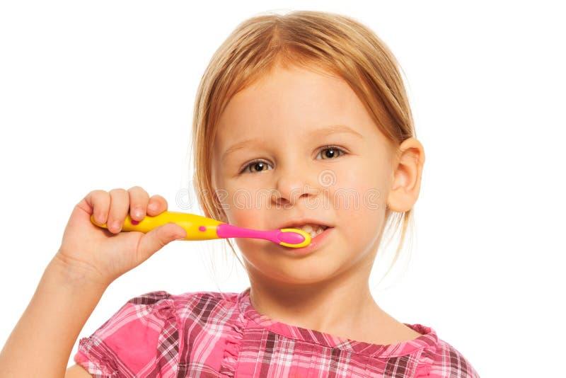 Зубы щетки девушки стоковое изображение rf
