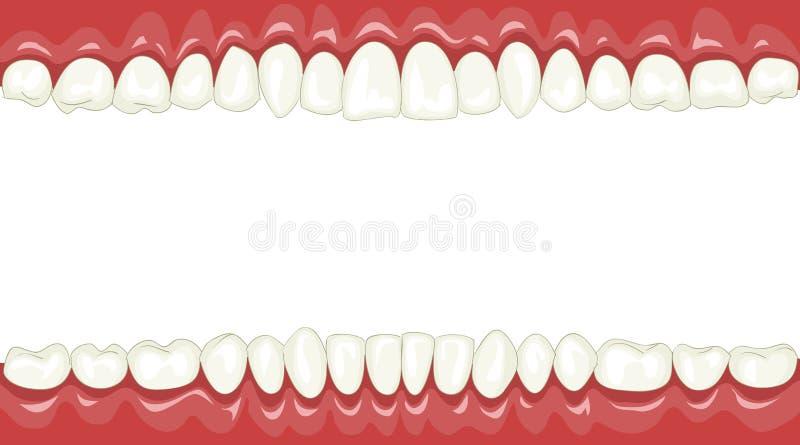 то, рамки для фото из зубов свадебный фотограф калуге
