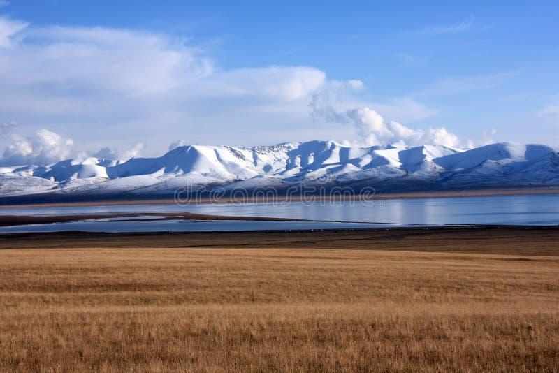 Злаковики озера песн-Kul, Кыргызстан стоковое фото