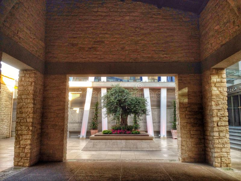 Здание оливкового дерева стоковая фотография rf