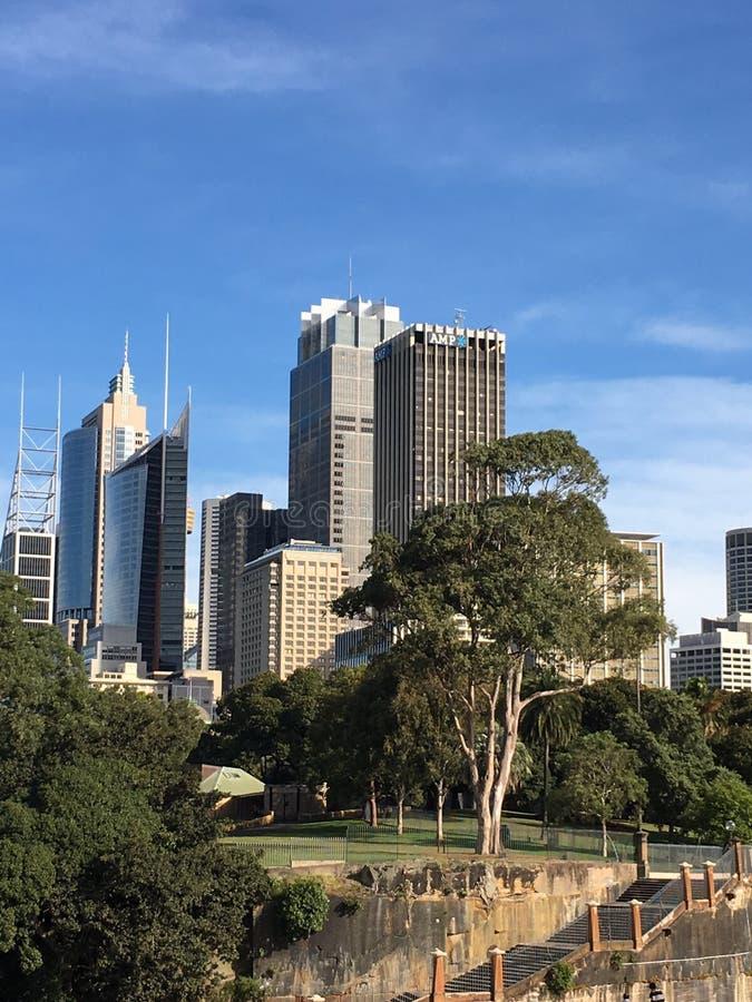 Здания города Сиднея стоковая фотография