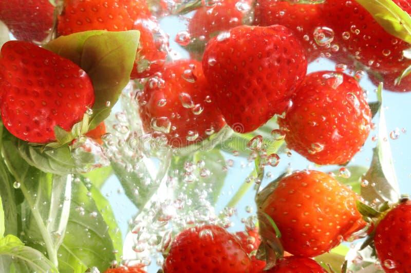 Здоровая вода вытрезвителя стоковые изображения rf