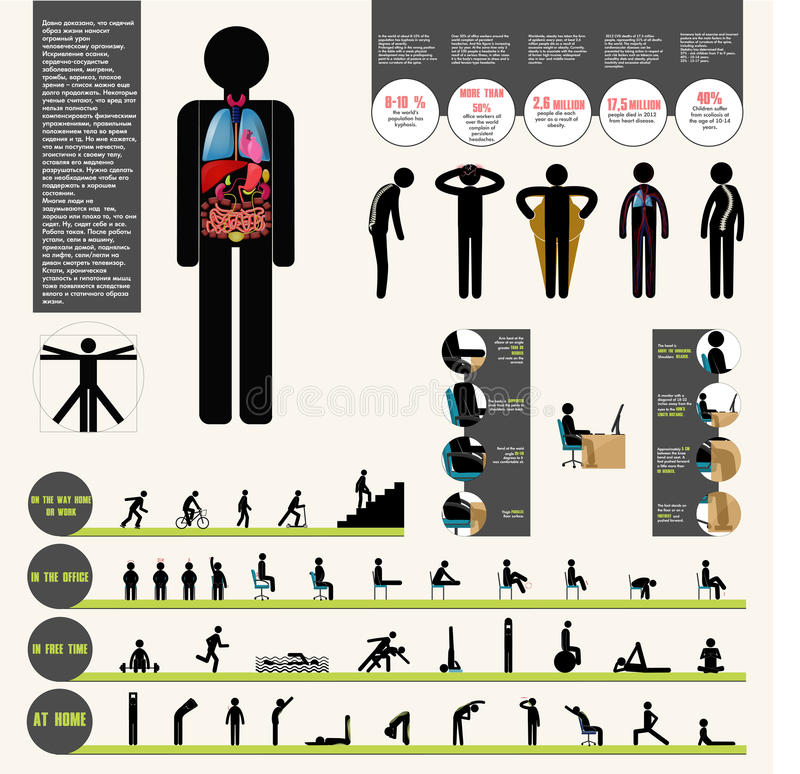 Здоровое infographic иллюстрация вектора