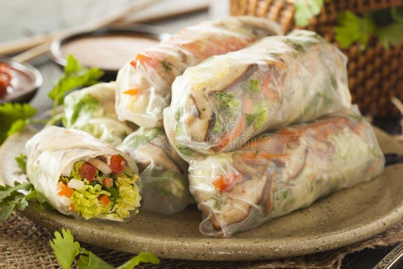 Здоровые вегетарианские блинчики с начинкой стоковые фото