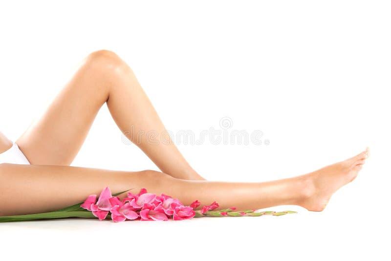 Здоровые женские ноги на белой предпосылке стоковые фотографии rf