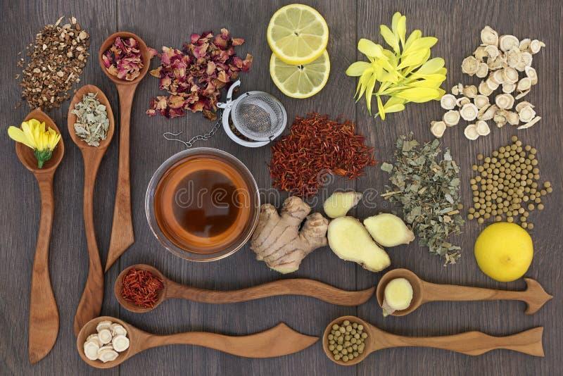 Здоровые травяные чая стоковые фотографии rf