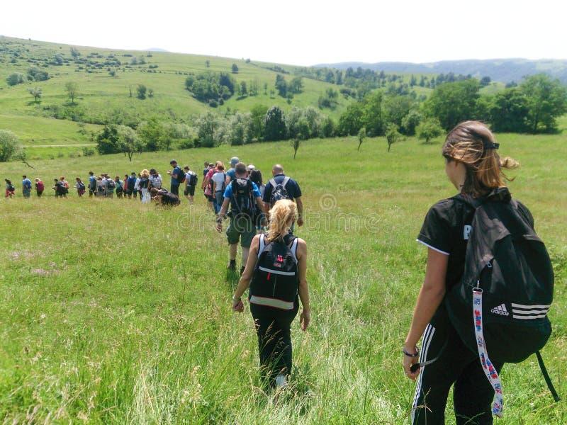 Здоровые люди hikers в походе природы стоковое изображение