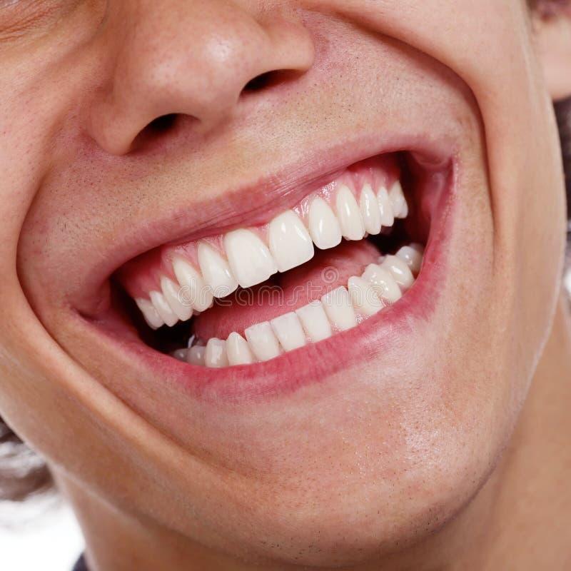 Здоровый крупный план зубов стоковые изображения rf