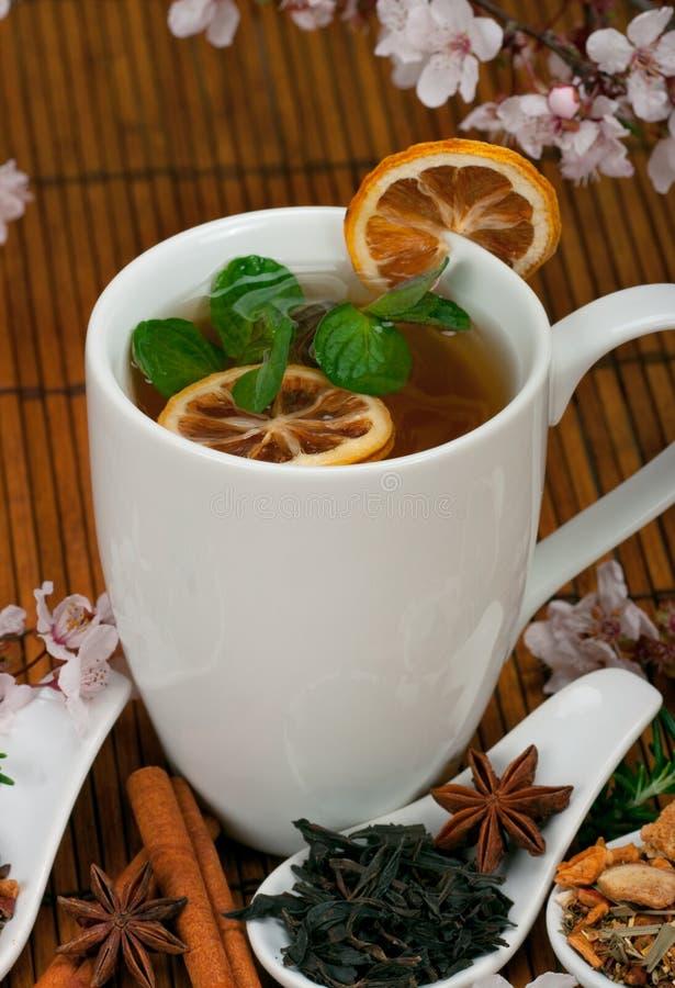 Здоровый чай стоковые изображения