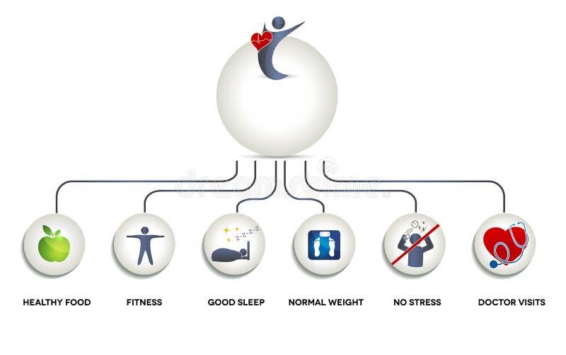Здоровый человеческий график иллюстрация вектора