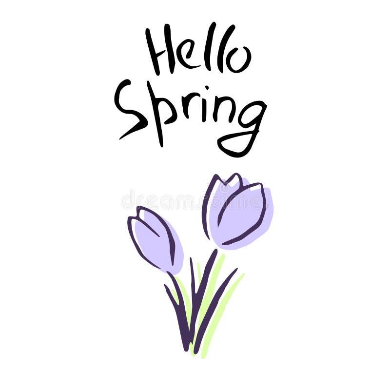 Здравствуйте! литерность весны Милые цветки сирени эскиз крокус иллюстрация штока