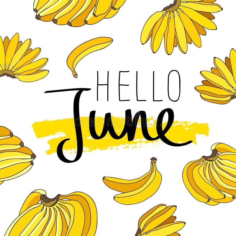 Здравствуйте! июнь Модная каллиграфия иллюстрация вектора