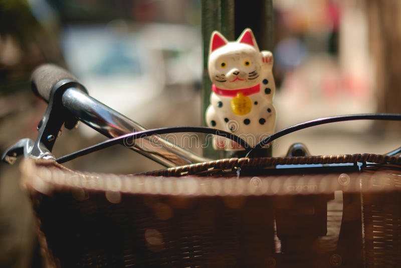 Здравствуйте! кот стоковое фото