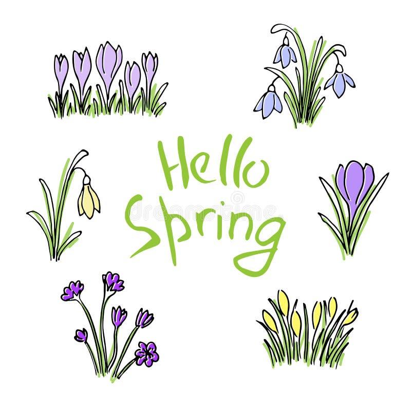 Здравствуйте! покрашенный весной комплект эскиза Первые цветки и литерность бесплатная иллюстрация