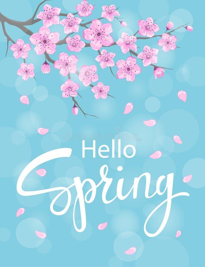 Здравствуйте! предпосылка весны с цветками вишневых цветов бесплатная иллюстрация