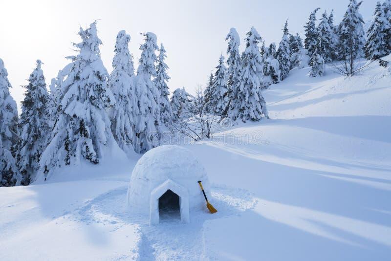 Иглу снега в горах в зиме стоковые фотографии rf