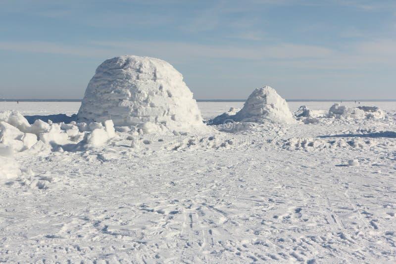 Иглу стоя на снежном glade стоковые фото