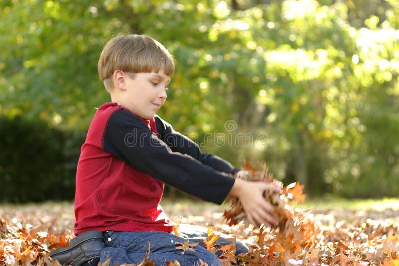 играть листьев ребенка стоковое фото
