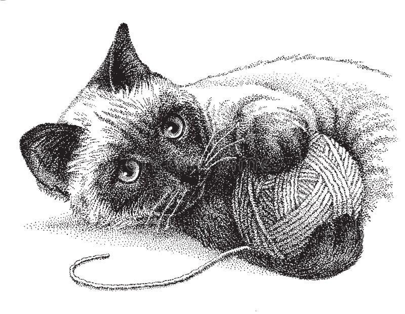 Играть сиамского кота иллюстрация штока
