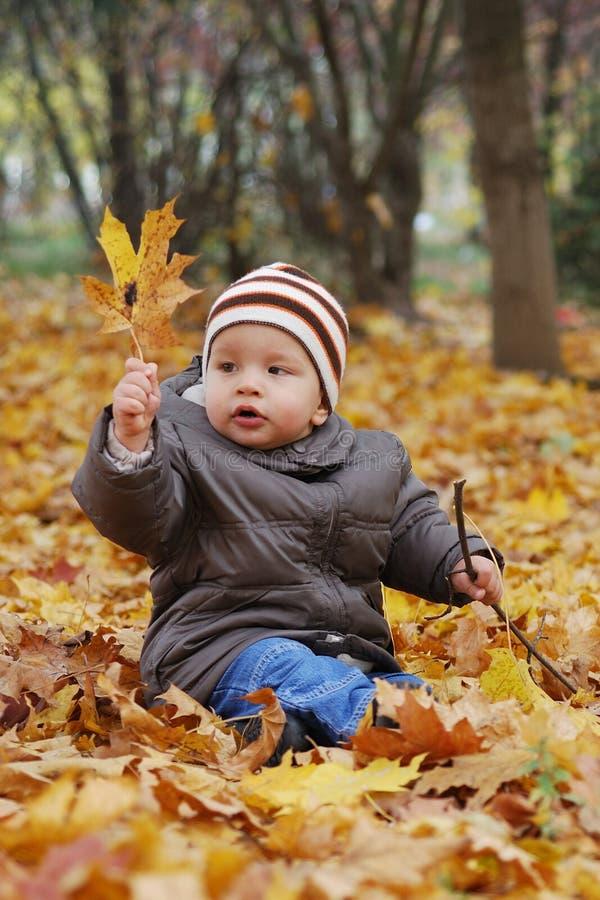 Download играть счастья пущи ребенка Стоковое Фото - изображение насчитывающей природа, сторона: 6850978