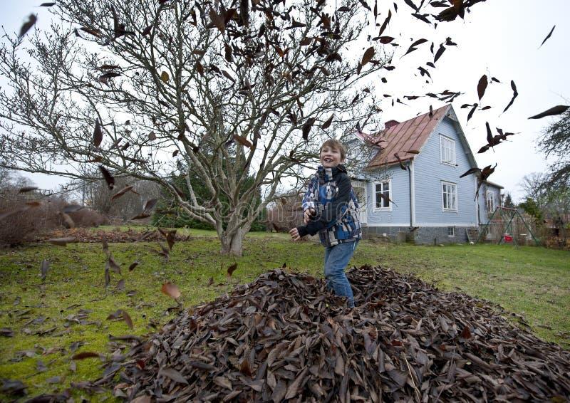 Играть с листьями стоковые фото