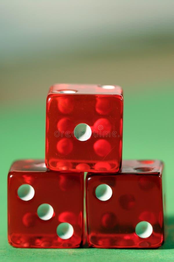 играя в азартные игры золотая медаль стоковая фотография