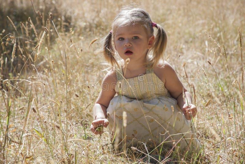 Игра маленькой девочки в древесинах стоковая фотография