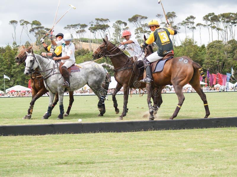 Игроки и лошади поло группы 4 состязаются для шарика с mal стоковая фотография